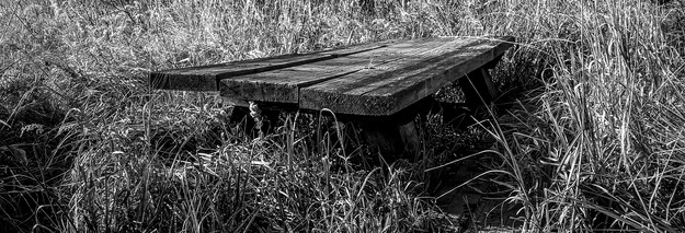 Picnic Bench at Socher Lake, Mike Wright, MW33.jpg