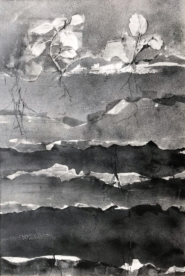 Growth, Lynn Marit-Peterson, Rooted (1).