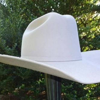 Western Hat and Hat Carrier (Gray)