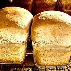 Homeade Honey Wheat Bread