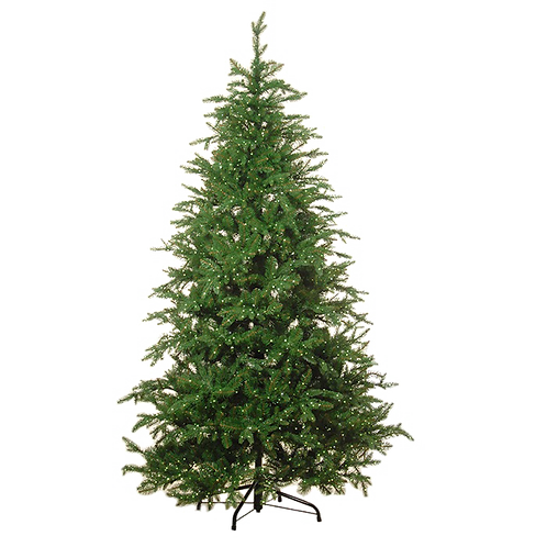 The perfect Christmas tree (with lights)
