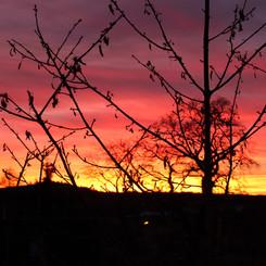 Scottish Sunsets