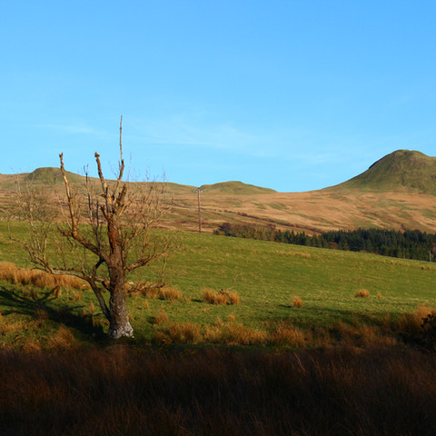 Dumgoyne, Stirlingshire