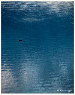 Nattfiske Skageflå
