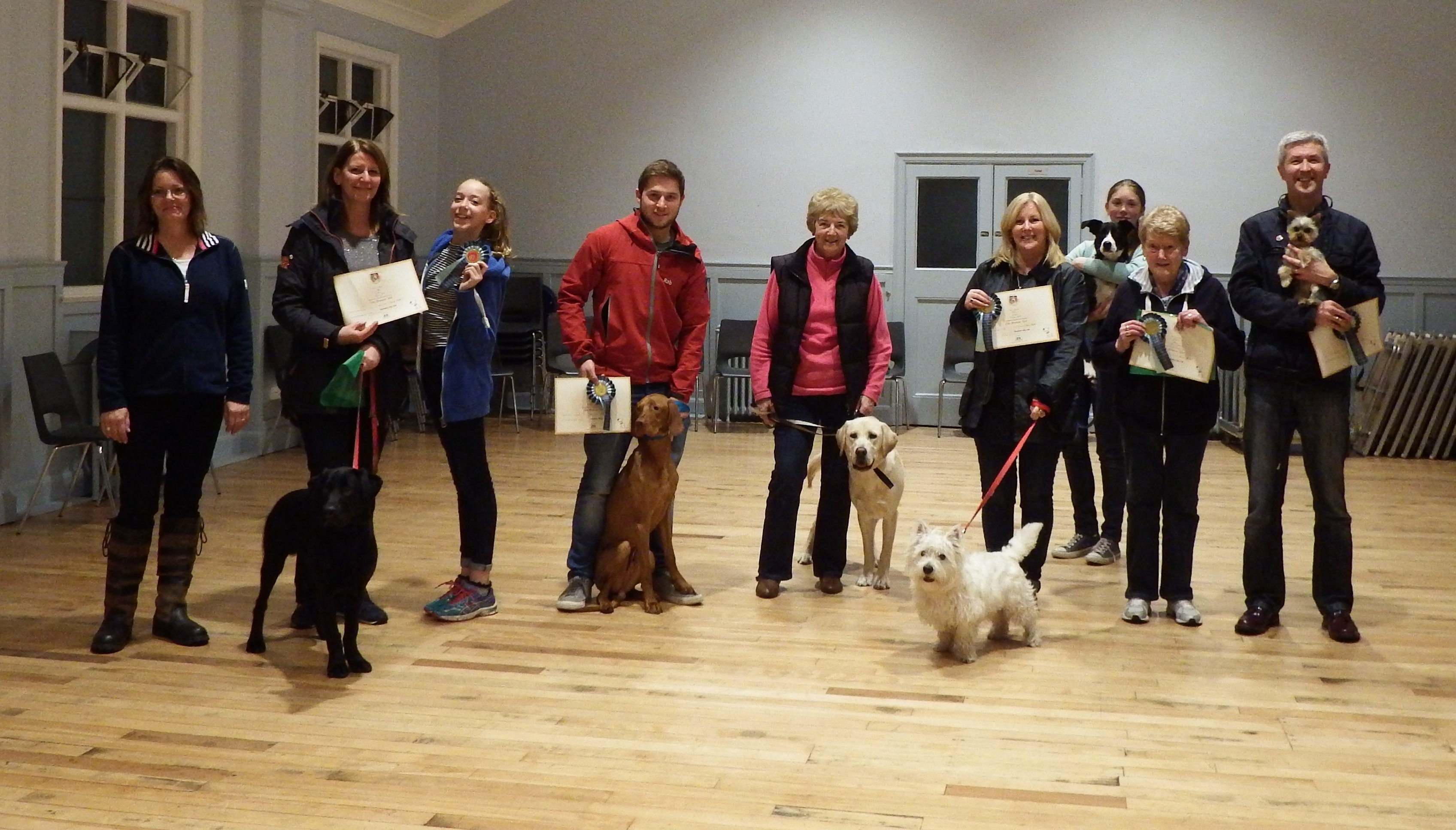 bronze test discovery dog club 26Oct15