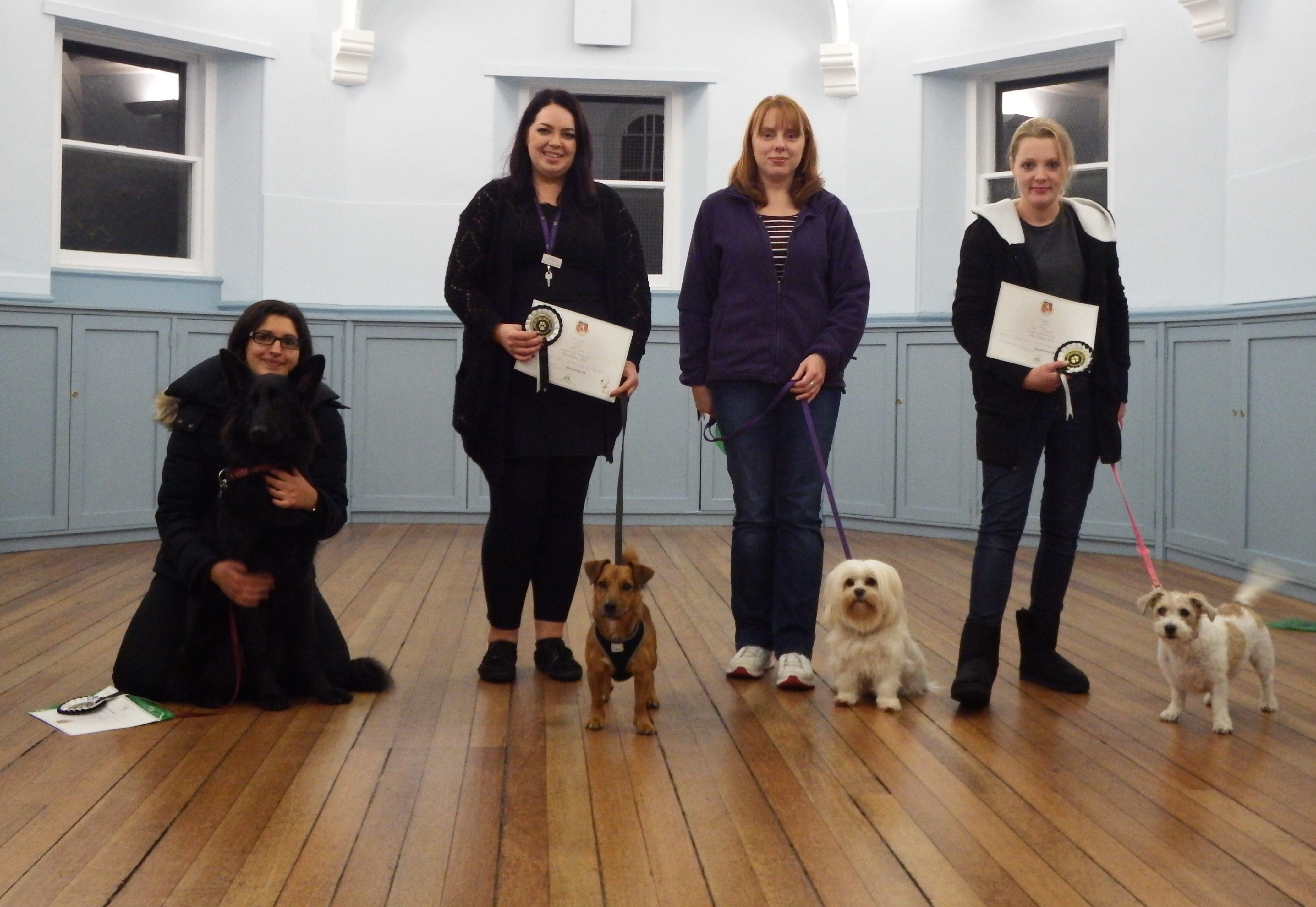 Silver Test discovery dog club 26Oct15