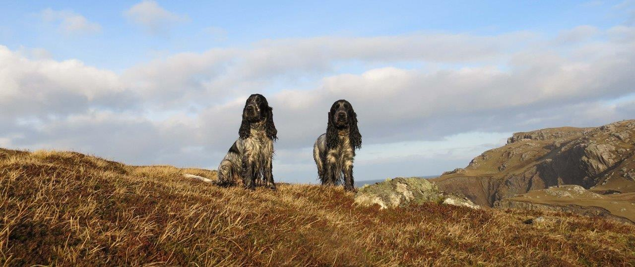 Isle of Lewis 3 Dec 2014.jpg