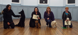 gold test discovery dog club 26Oct15