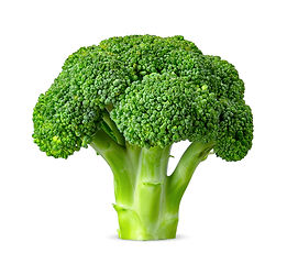 Broccoli isolated on white background wi