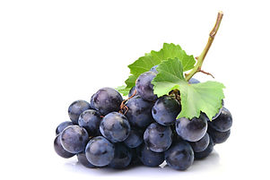 Grapes on a white background.jpg