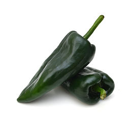 Two dark green poblano peppers isolated
