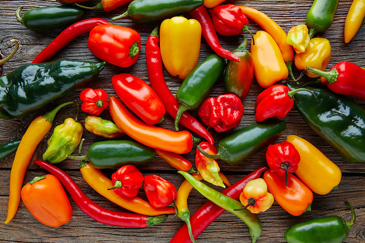 Mexican hot chili peppers colorful mix h
