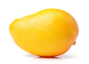 mangos%20on%20white%20background%20_edit