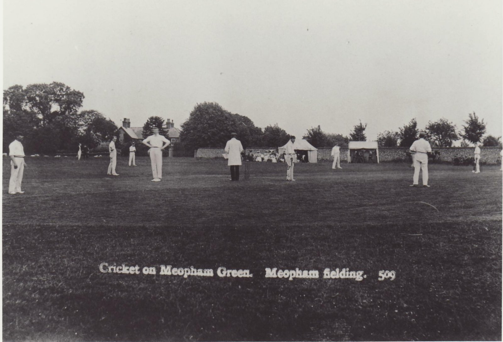 07-Cricket-02A