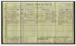 1911 census for Caller family, showi