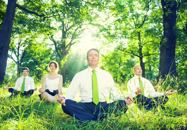 a zen corp pic 1.jpg