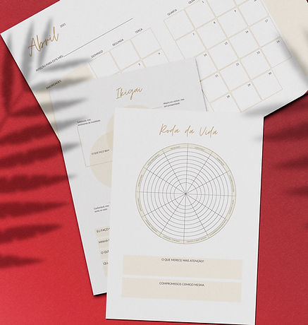 Planner Mandala Vênus.jpg