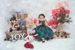 Almeida's Christmas 2017-17_f.JPG