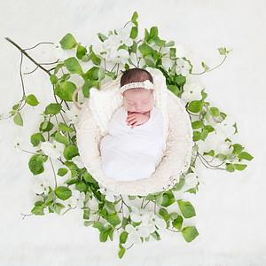 Isla's Newborn