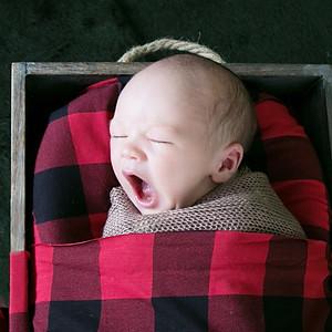 Atticus' Newborn