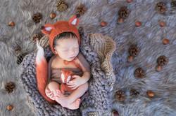 Dariu's Newborn-14