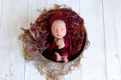 James' Newborn-8
