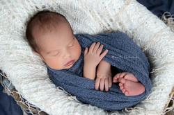 Alexander's Newborn-1 copy