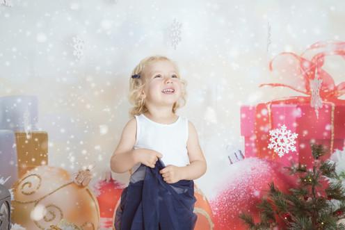 Gaissert's Christmas 2017-8_f.JPG