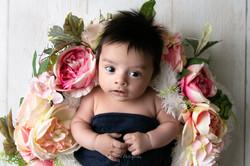 Arya's Newborn-3