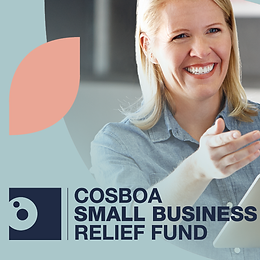 Small Business Relief Fund Grants