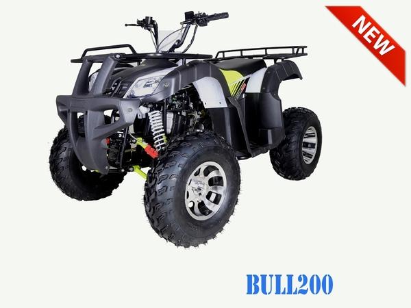Bull 200 Stock1