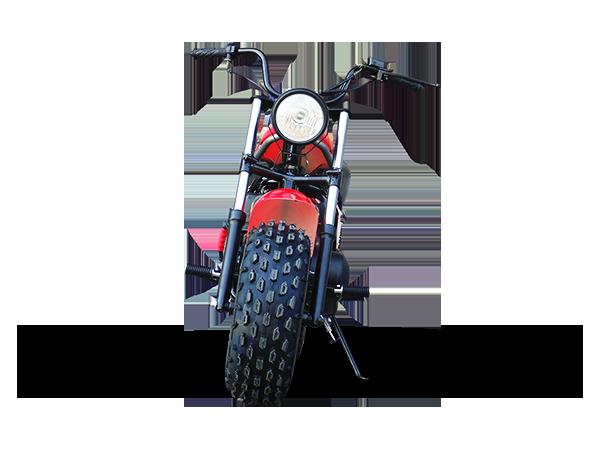 Trailmaster Mini bike 1