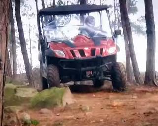 Ranch-Pony-600-EFI woods