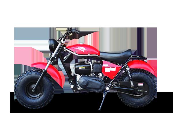 Trailmaster Mini bike 3