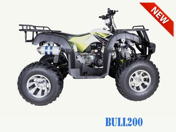 Bull 200 stock2