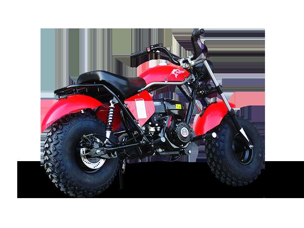 Trailmaster Mini bike 6