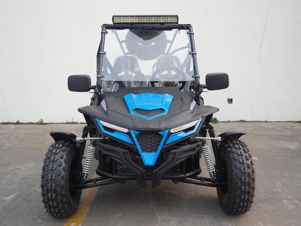 Cheetah 150X Blue (7)