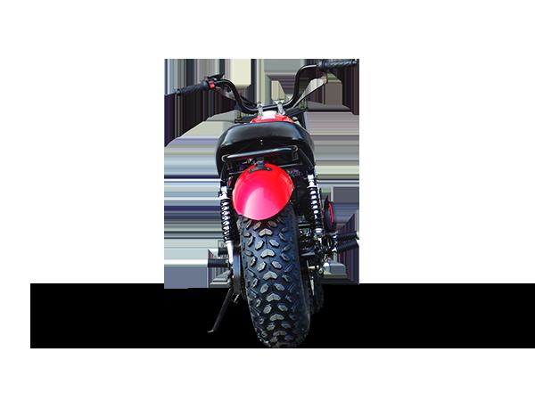 Trailmaster Mini bike 5