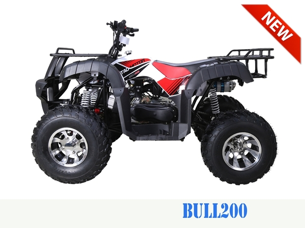 Bull 200 Stock4