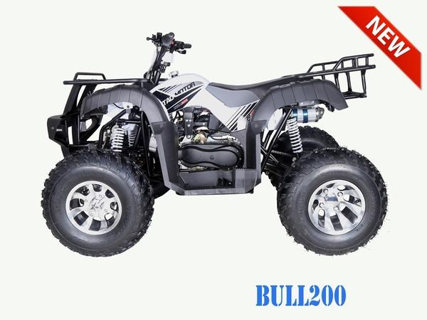 Bull 200 Stock6