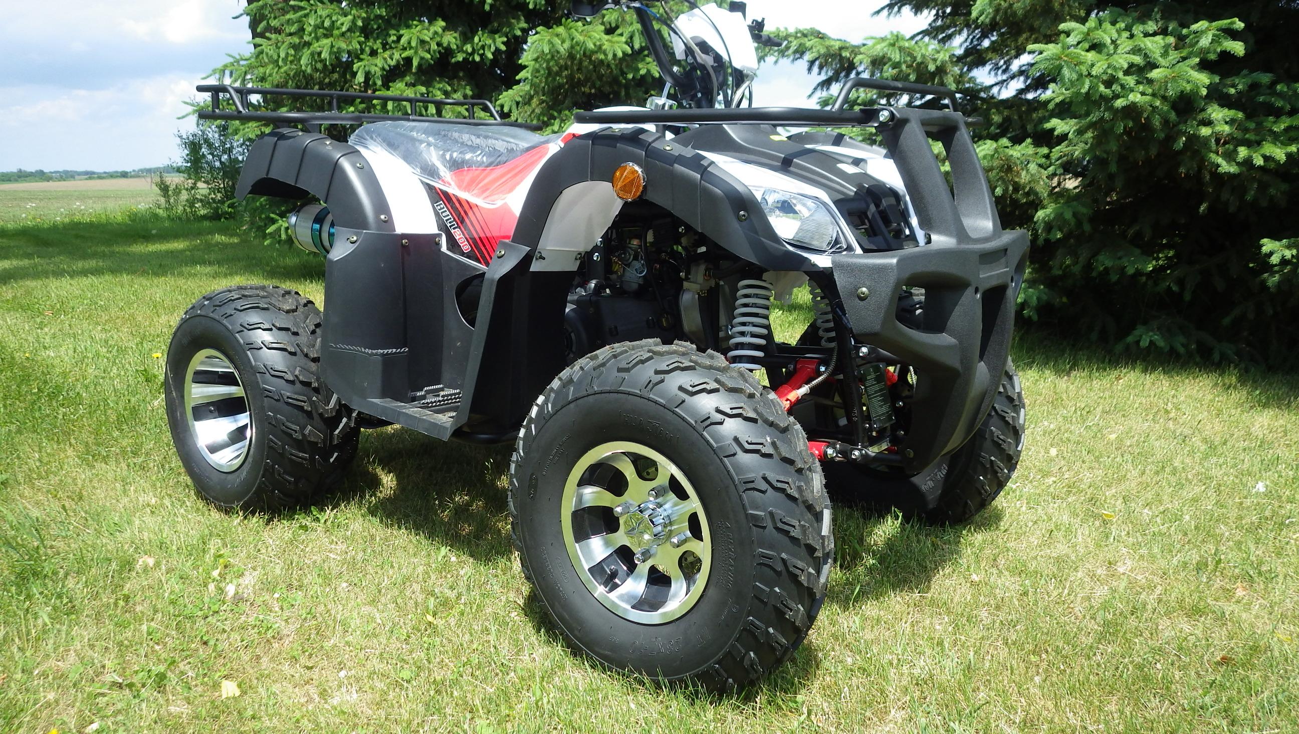 Bull 200 Red LF