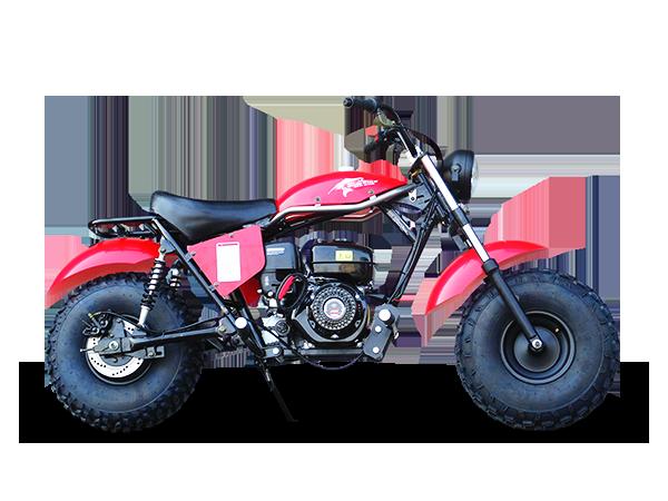 Trailmaster Mini bike 7