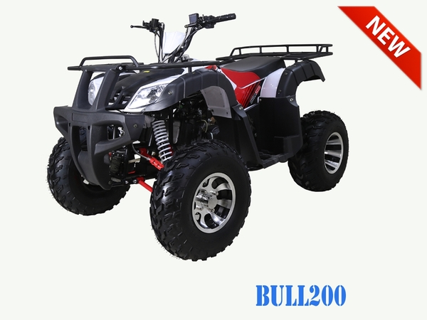 Bull 200 Stock3