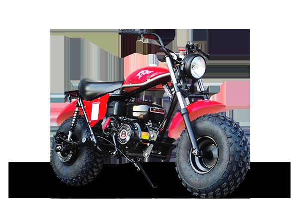 Trailmaster Mini bike 8