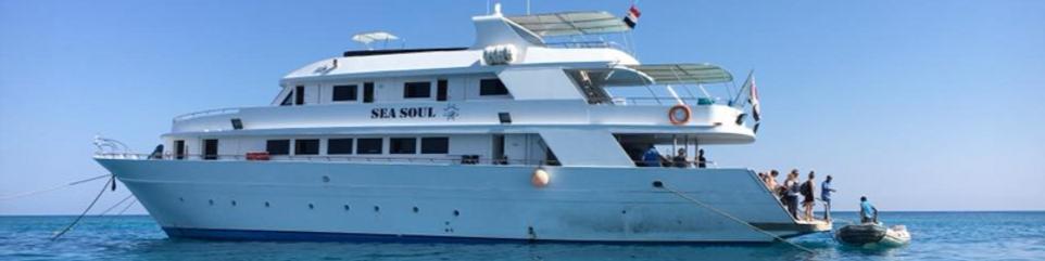 Le Sea Soul, yacht des participants au caoching facilité par le dauphin DolphInYou