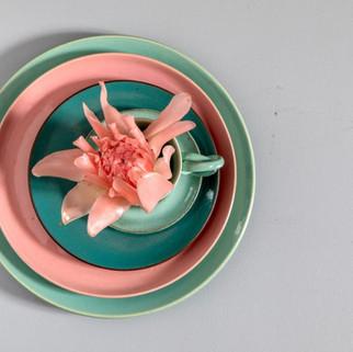 Pratos acqua e rosa
