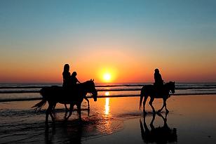 passeggiata-a-cavallo-in-spiaggia-turism