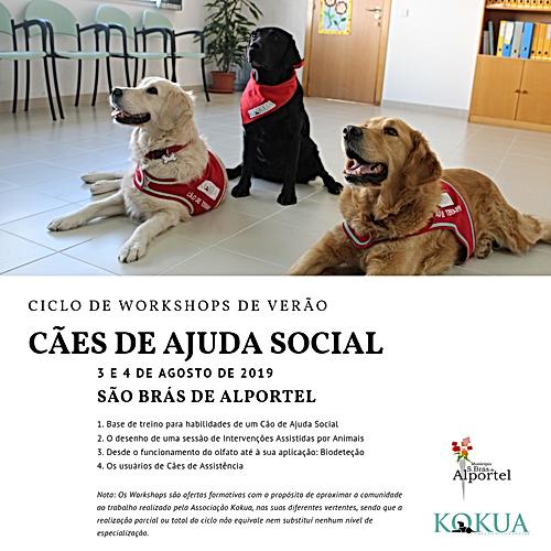Poster Ciclo de Workshops.png