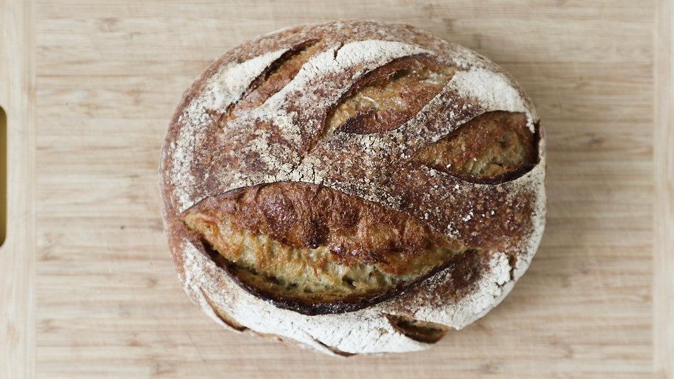 Wild Wheat Sourdough