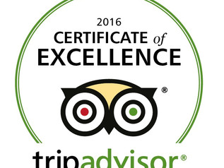 MK TripAdvisor Spotlight for March 2017 | MK Taxi Private Tours | Kyoto Japan